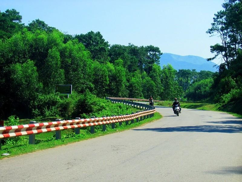 Đèo Violet - Quảng Ngãi Tourist